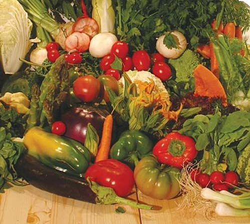 Dettagli Ristorante Fata Zucchina